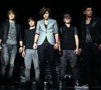 One Direction (Harry, Niall, Liam, Zayn, Louis)