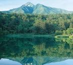 Une belle forêt avec son lac et les montagnes.