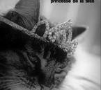 princesse de la tess