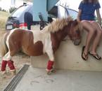 Bébou fait trop poney de compet la :3 ♥