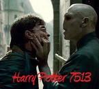 HarryPotter7513/2