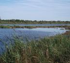 Un beau paysage lacustre