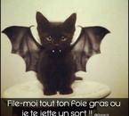 Hummm le foie gras