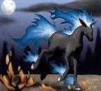 Galopa noir et bleu