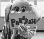Paradise. . .
