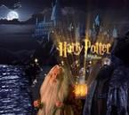 Harry Forever ♥