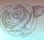 ma dernière rose alors vous en pensez quoi ?