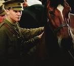 War Horse ♥