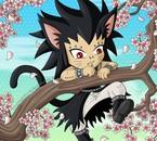 cat gajill grimpe à l'arbre