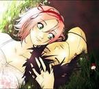 Couple de Sasuke et Sakura