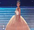 Flora Coquerel, Miss Orléanais 2013 & Miss France 2014