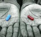 Pilule-ROUGE