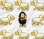Mes couvertures