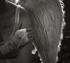 Lovely Fallen Angel
