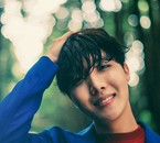 Photoshoot colors J-Hope