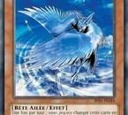 Carte kawaii Yu-Gi-Oh!