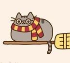 Après le chat-tartine-qui-vole-dans-l'espace...