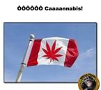 ÔÔÔÔÔÔ Caaaannabis !