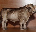 Taureau Brune 2001