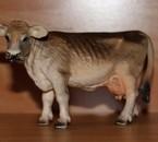 Vache Brune 2001