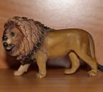 Lion 2005