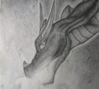 Mon livre de Dragons