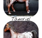 Tamriel