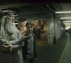 Harry Potter et Albus dumbledore