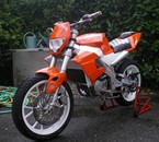 DERBI GPR RACING NUDE