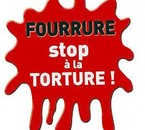 Non a la Fourrure