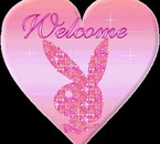 Welcome a vous !!!!!!!!!