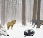 Pou wolfs-rain-fic
