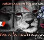 NE PAS MALTRAITER LES ANIMAUX!!