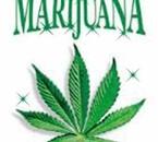 marijuana jaime sa !!
