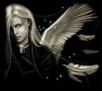 l'ange tombé du ciel
