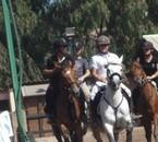 team horse ball