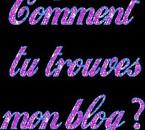 comment tu trouve mon blog