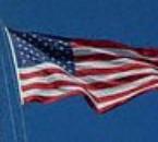 U.S.A. !!!