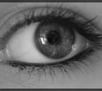 Mon Oeil Sisi
