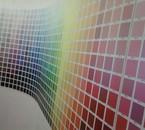 La couleur est un corps de chair où un coeur bat.