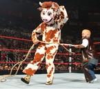 Hornswoggle vs Chavo Guerrero déguisé en Cowboy !