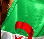 drapau de l'algerie