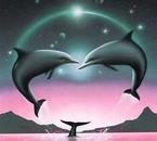 un coeur de dauphin que j aime