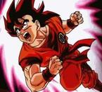 Goku En Kaioken!!
