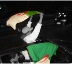 vive le défilié des algerien