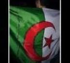 ViiVe L'algerie