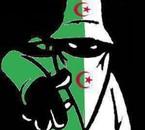 mafia algérie