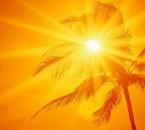 Connaissez-vous le soleil de la Guyane?