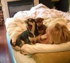 lachelle et ses chiens