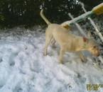 DEIKA dans la neige délire